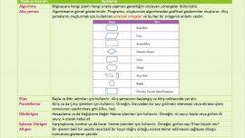 Lise Bilgisayar Bilimi Algoritmalar ve Akış Şemaları Föyleri [PDF]